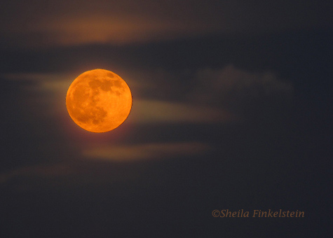orangemoon in darkcloudysky left Lessons from Photographing Orange Full Moons