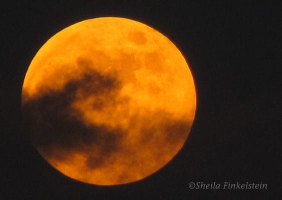 Full Moon October 2013 Showing as Orange Color